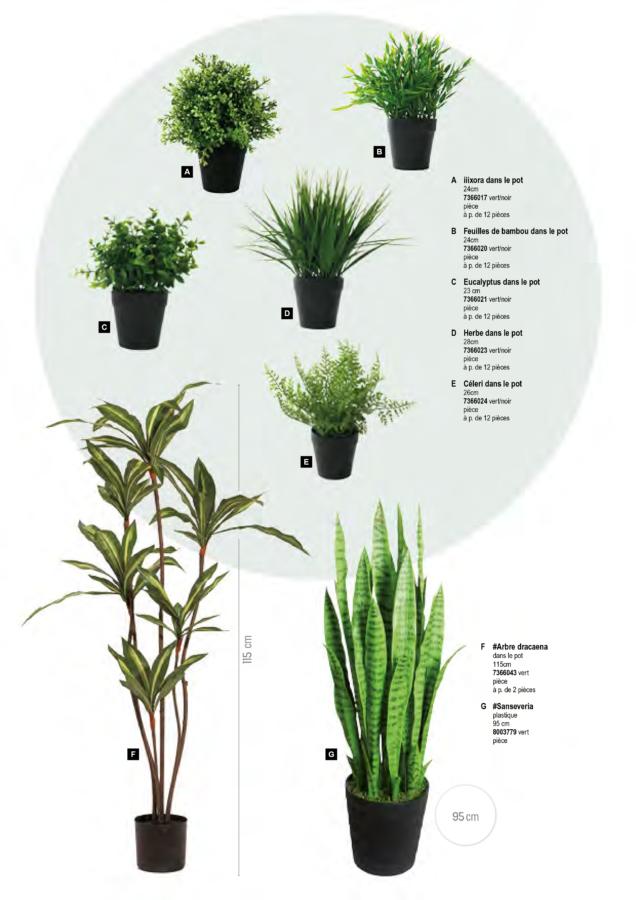 plantes_artificielles_2019 (10)