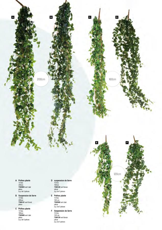 plantes_artificielles_2019 (18)