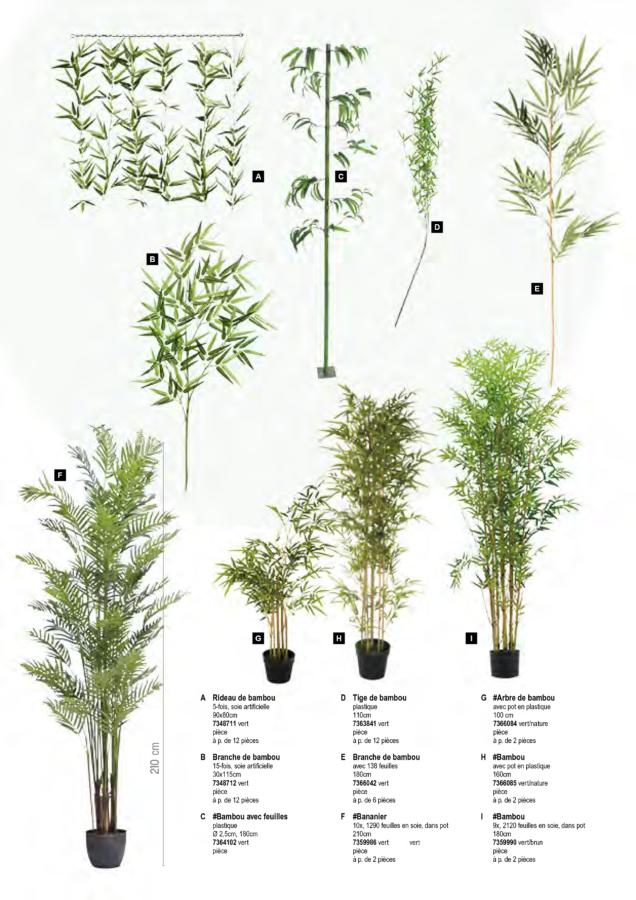 plantes_artificielles_2019 (2)
