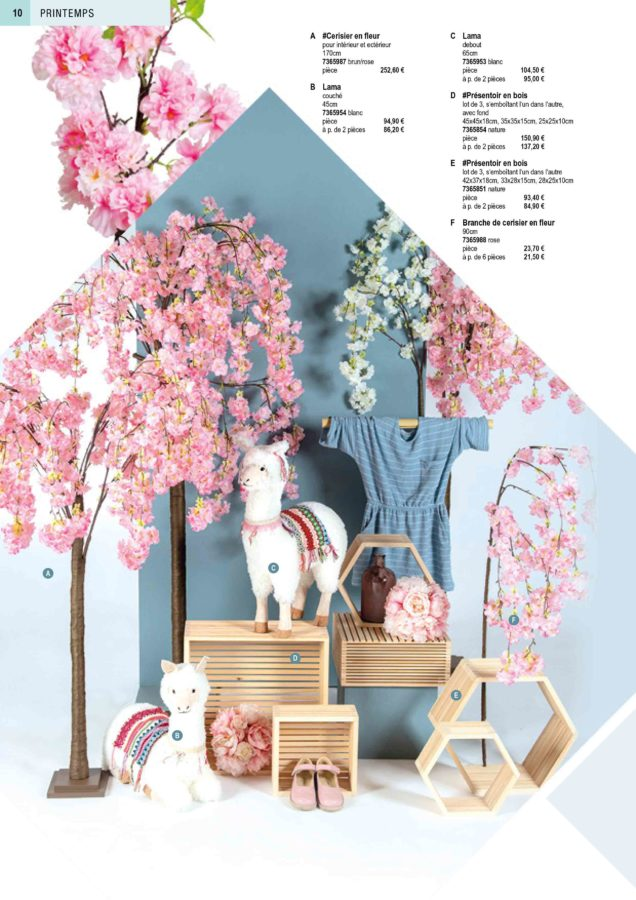 printemps-2020-page-10